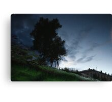 space in you Canvas Print