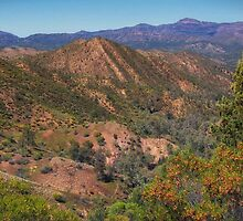 ABC and Heysen Ranges by Bette Devine