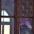 Church Window by sonjas