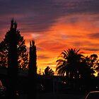 Desert Sunset by wprweb