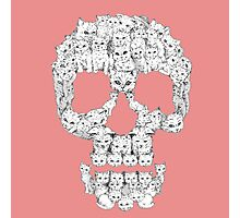 Skulls are for Pussies Photographic Print