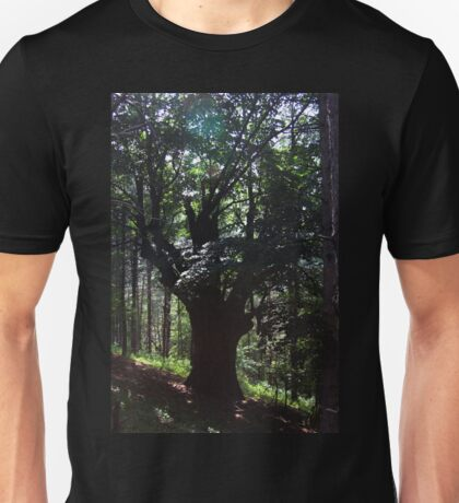 A Lone Deciduous Tree in a Pine Forest Unisex T-Shirt