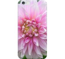 Soft Pink Dahlia iPhone Case/Skin