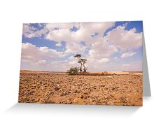 Desert Oasis. Photographed in Israel Greeting Card