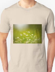 common chamomile (Anthemis cotula) Unisex T-Shirt