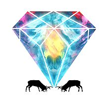 Diamonds are a Deers best friend Print Photographic Print