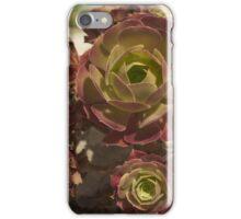 Arid iPhone Case/Skin
