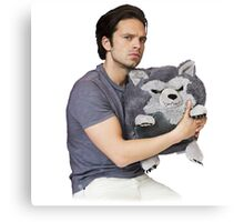 Sebastian Stan Canvas Print