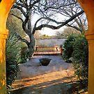 Tumacacori Mission Garden by Linda Gregory