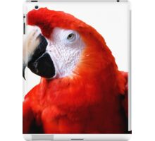 Red Macaw iPad Case/Skin