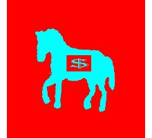 Blue horse Photographic Print