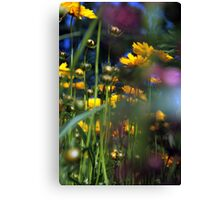 Lying, looking up Canvas Print