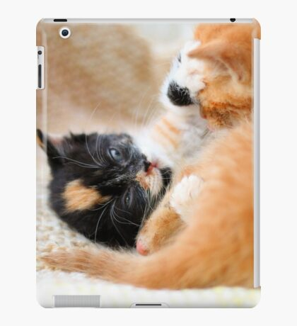Play fighting kittens iPad Case/Skin