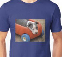 Sterling Unisex T-Shirt
