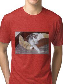 Misty Sleeping Tri-blend T-Shirt