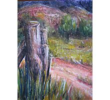 Fence Post in Flinders Ranges by Heather Holland Photographic Print