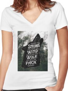 A Game of Thrones Women's Fitted V-Neck T-Shirt