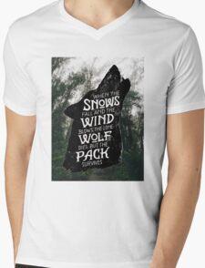 A Game of Thrones Mens V-Neck T-Shirt