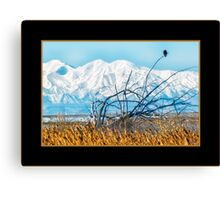 Salt Lake Solitude Canvas Print