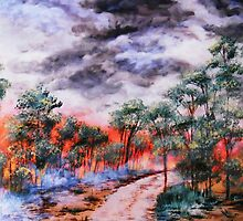 bush fire by atouchofcanvas