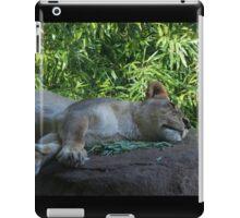 Sleeping Lioness iPad Case/Skin