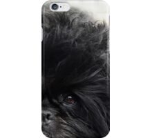 The Affenpinscher (translated from German as Monkey-Terrier) iPhone Case/Skin