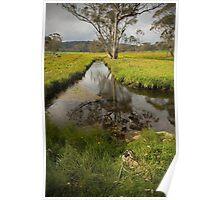 Styx River - NSW Australia Poster