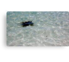 Sea Monster? (Light) Canvas Print