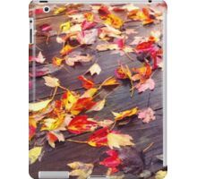 Fallen Colors iPad Case/Skin