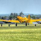 Harvard Takeoff  by Nigel Bangert