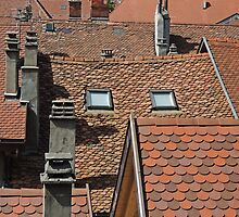 Roof Abstract by Alexandra Lavizzari