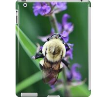 Collection for the Queen iPad Case/Skin