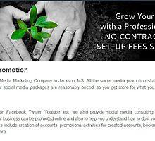Web Design Seo Company in Jackson by dollaradaysit0