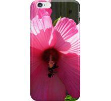 Bumble Bee Battle iPhone Case/Skin