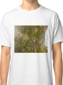 Mossy Tree with Sun Flare Classic T-Shirt
