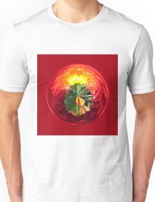 Fire Globe Unisex T-Shirt