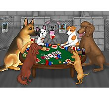 Poker Night at the Dog Shelter Photographic Print