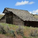 Justinother Barn - Oregon State Route 19, Gilliam County, OR by Rebel Kreklow