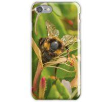 Bumble bee on honeysuckle again iPhone Case/Skin