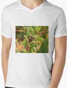 Bumble bee on honeysuckle again Mens V-Neck T-Shirt
