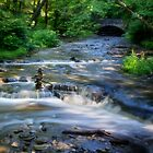 Wolf Creek - Letchworth State Park by Kathy Weaver