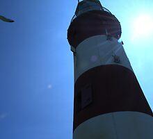 Smeaton's Tower by Mat Goodman