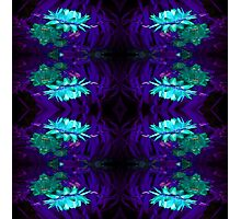Blue on Blue flowers pattern Photographic Print