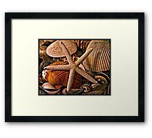 Shell Art Framed Print