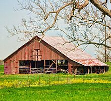Barn by Savannah Gibbs