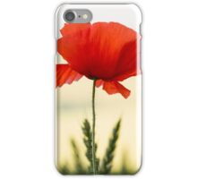English Field Poppies iPhone Case/Skin