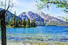Jenny Lake by Tori Snow