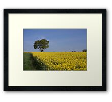 Sprouting Framed Print
