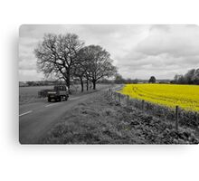 Cheshire | Rapeseed Field 01 Canvas Print