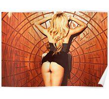 Piper Precious Gold Nº 73-5017 Poster